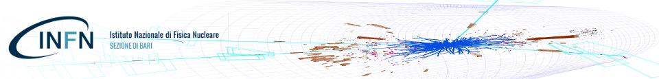 Bosone di Higgs a CMS @ CERN
